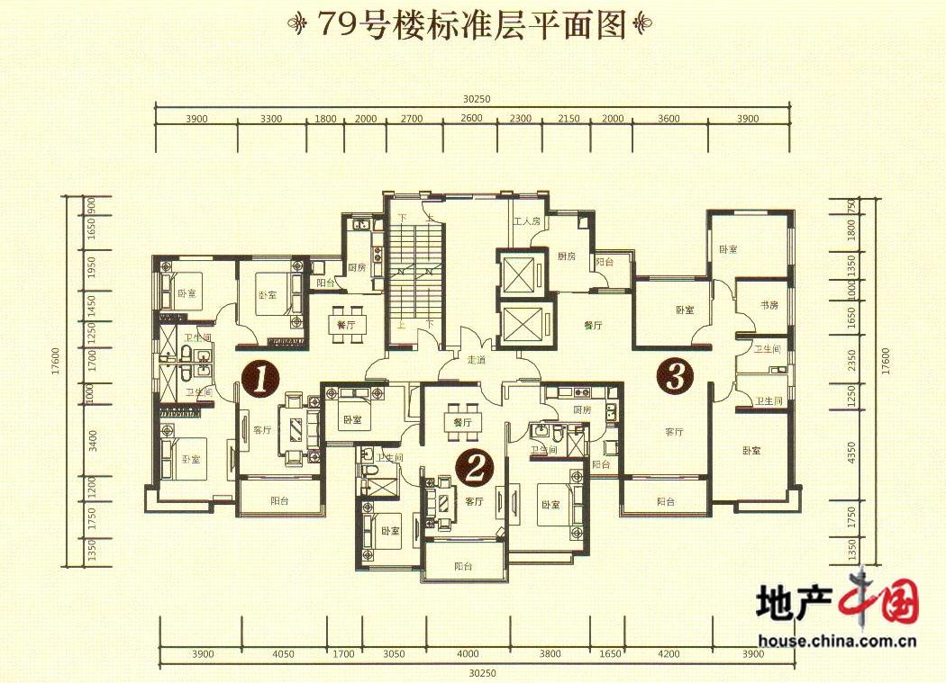 79号楼标准层平面图