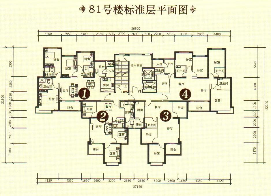 81号楼标准层平面图