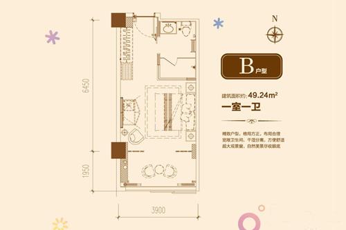 B户型 1室1厅1卫