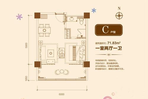 C户型 1室2厅1卫