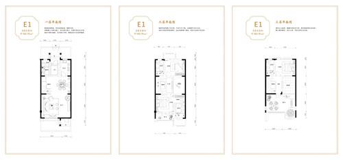 联排E1中户户型 4室4厅4卫