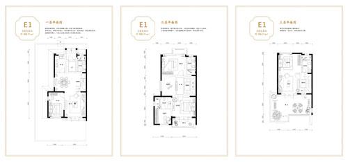 联排E1边户户型 4室4厅4卫