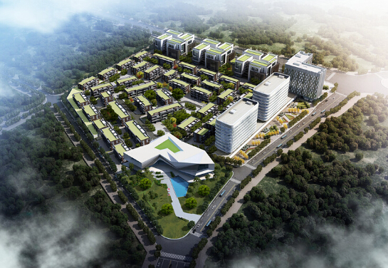 美国思科Capital团队访问中国云教育产业园-品