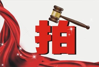 6月土拍预告:大放量!18宗土地定档阜阳市6月土拍!-中国网地产