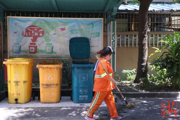 杭州小区垃圾桶乱堆放 有关部门:将消除