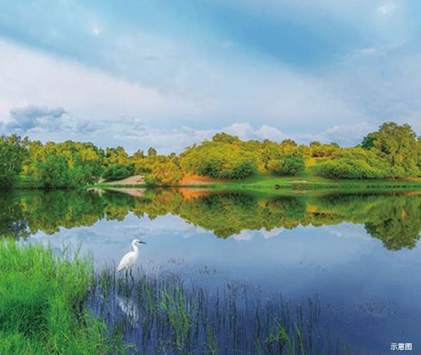 新浦中心紫荆国际天鹅湖畔公园住区-中国网地产