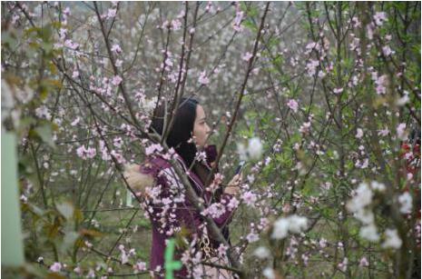 春天的場景 長出春天的故事-中國網地産