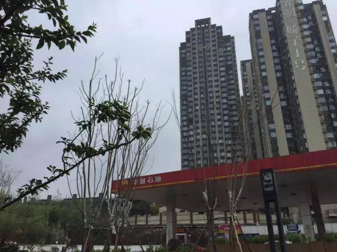 4万/㎡的首创娇子1号出街,金茂府们都笑了-中国网地产