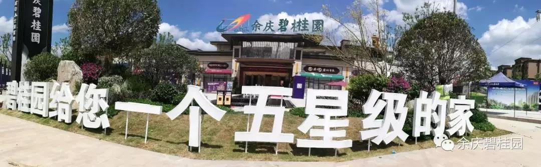 余庆碧桂园 |YJ215 汇聚一家人的欢声笑语-中国网地产