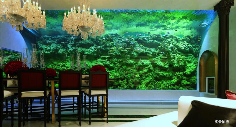 最美巨型海缸惊艳港姐 北京5000万量级合院新品入市-中国网地产