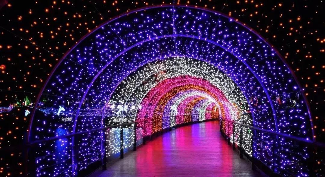 为期20天 | 保利·未来城市湖滨梦幻灯光节震撼来袭-中国网地产