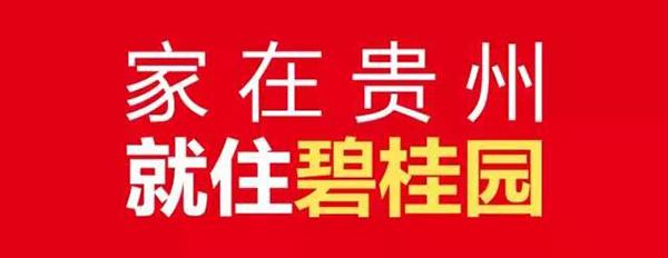碧桂园·城央壹品 | 南部中心理想生活居所-中国网地产