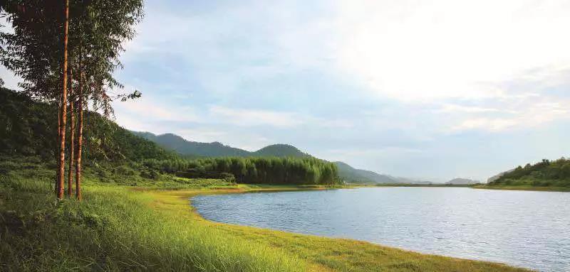 【碧桂园·新蒲1号】新文化视野下的湖山华宅-中国网地产