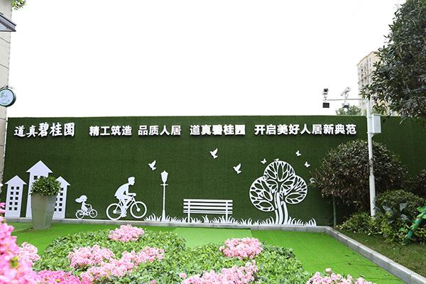 精工筑造品质人居 道真碧桂园开启美好人居新典范-中国网地产