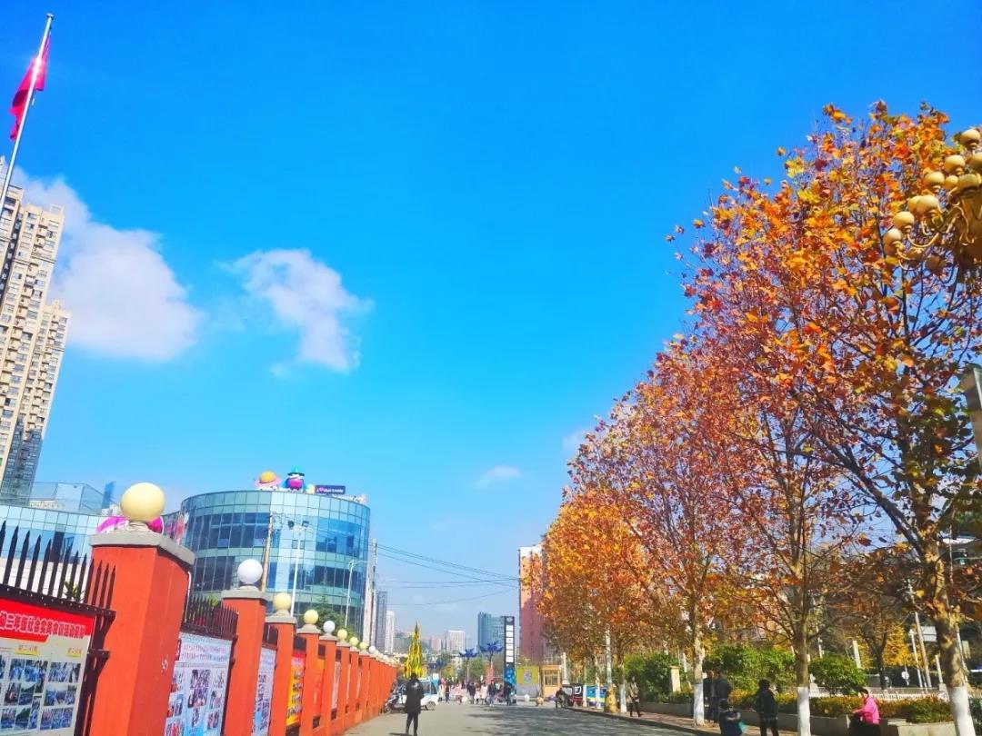 中国铁建地产贵州:初冬 写一首给生命的情诗醉在TA的美丽里-中国网地产
