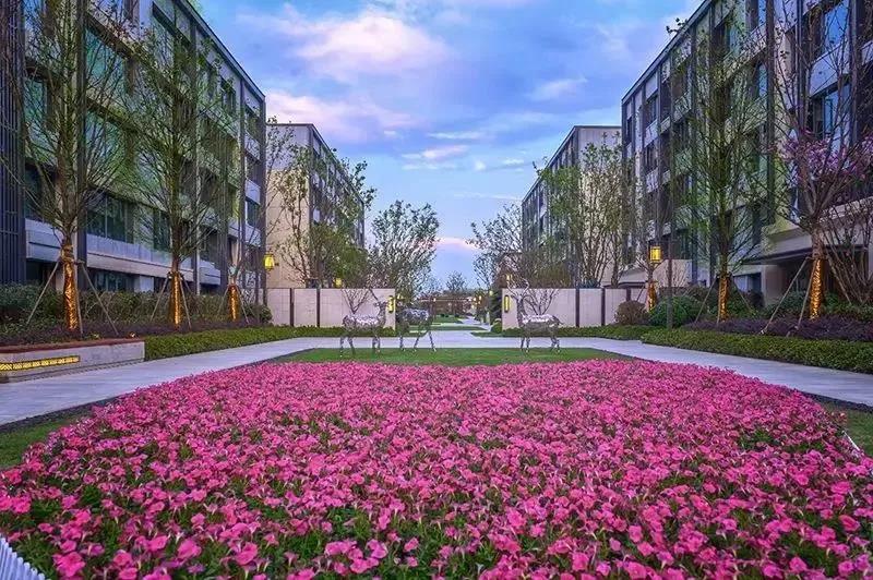 对话|文一房地产集团执行总裁夏明军:力求将文一塘溪津门打造成合肥形象的一个新窗口-中国网地产
