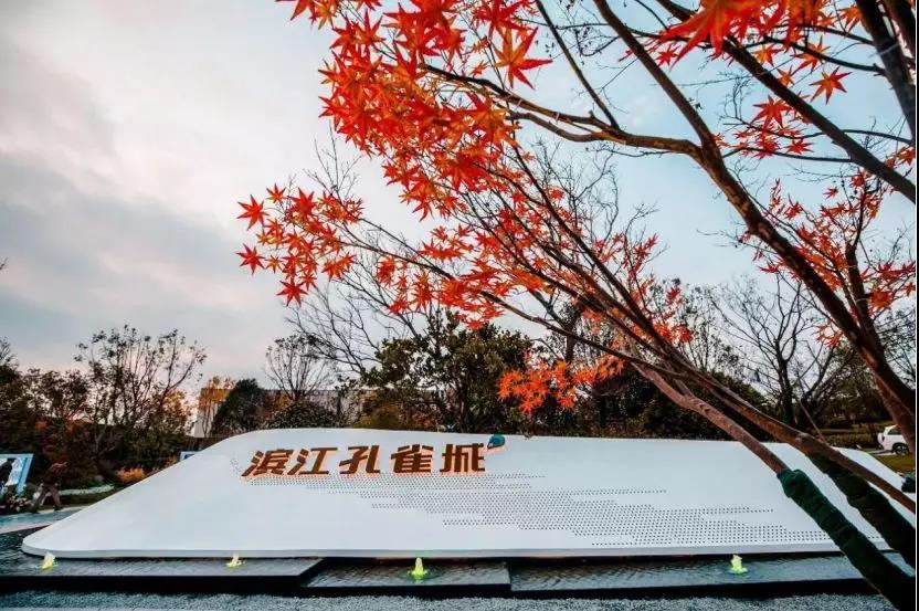 """重磅!紫东核心区设计方案出炉!这里才是主城东下一个""""蓝海""""!-中国网地产"""
