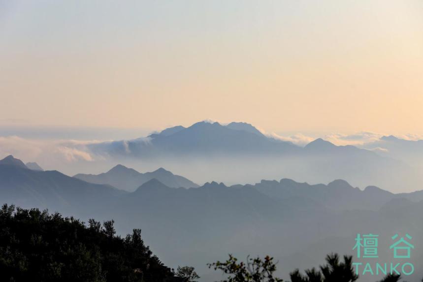 后疫情时代 在京投发展·檀谷探索未来理想生活新可能-中国网地产