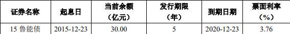 鲁能集团:20.4亿元公司债券票面利率为3.85%-中国网地产