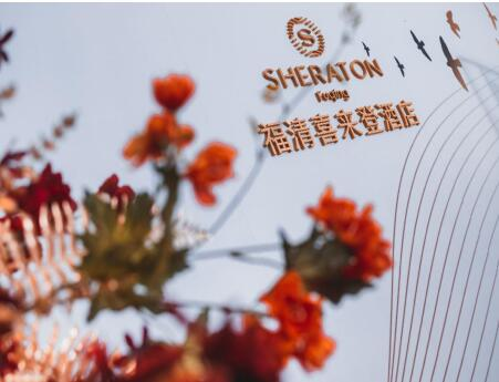金辉产业布局再添新子,福清首家喜来登酒店开业