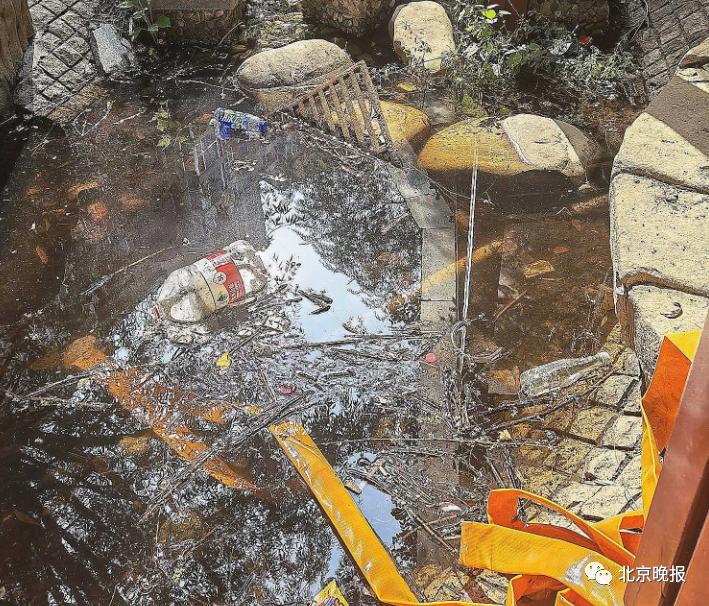 二环内均价12万+的小区,景观池成污水坑、房屋漏水、垃圾清运不及时……_中国网地产